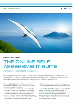 The Online Self Assessment Suite